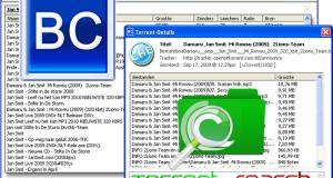 Bit Che Utilissimo, Pratico e Veloce software di ricerca file torrent