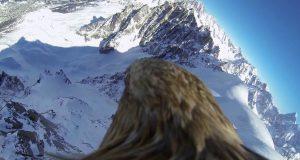 Il Monte Bianco visto con gli occhi di un aquila