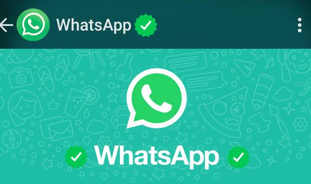 WhatsApp: la spunta verde per i profili verificati, che cos'è?