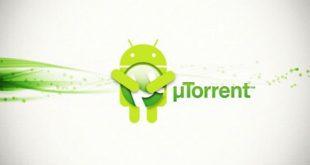 Come scaricare Torrent su Android: le migliori app gratis