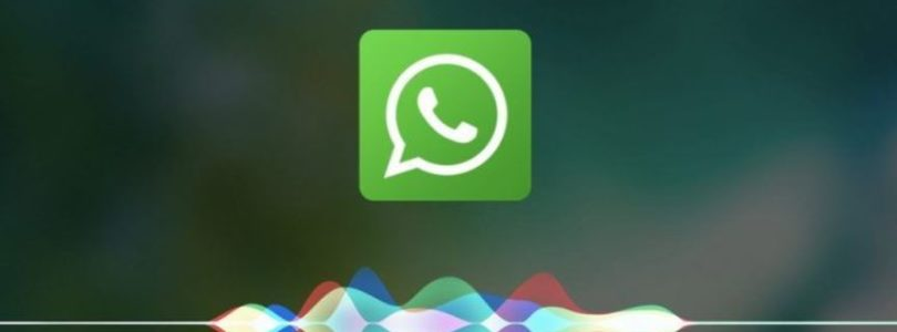 Come aggiungere nuovi toni di notifica e chiamata su WhatsApp